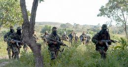 Bericht: Verbreitung und Aktivitäten der Paramilitärs im Jahr 2016