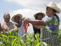 Diskriminierung von Frauen im ländlichen Kolumbien