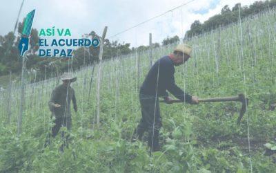 So steht es um den Friedensprozess: die Versäumnisse der Agrarreform