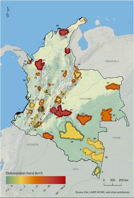 Entwaldung in Kolumbiens Nationalparks nach Unterzeichnung des Friedensabkommens