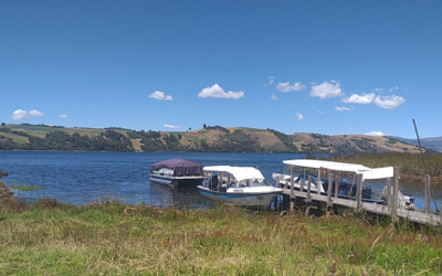 Wasserverschmutzung und Bleibelastung im Tota-See
